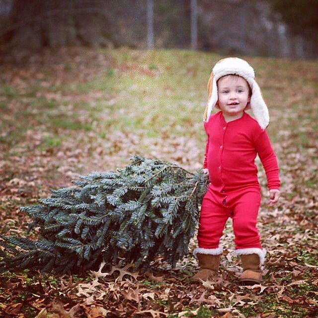 The 25+ best Toddler christmas photos ideas on Pinterest | Toddler ...