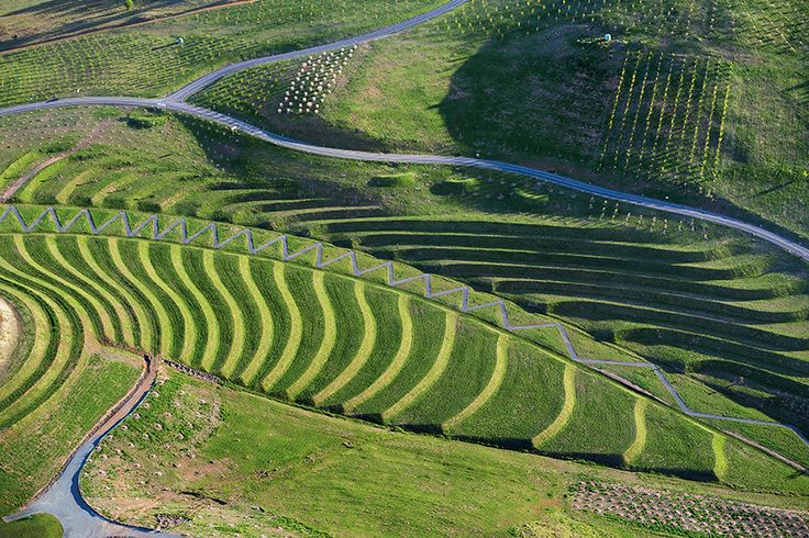 006-National Arboretum Canberra by TCL