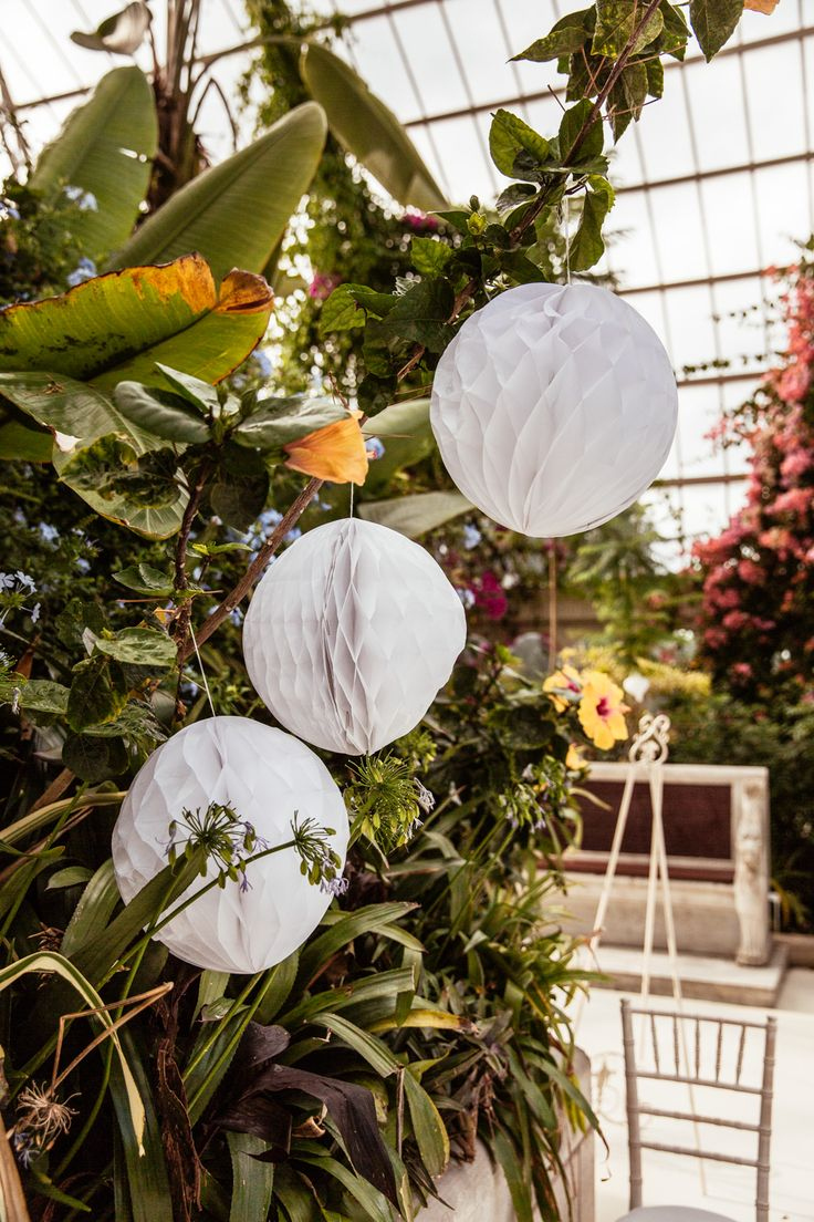 Hanging White Honeycomb Balls Wedding Decor - Cassandra Lane Photography | Anna Campbell Giselle Bridal Gown | Botanical Wedding at Sefton Park Palm House Liverpool | Chi Chi London Bridesmaid Dresses | Ted Baker Suit | Succulent Favours | Metallic Decor