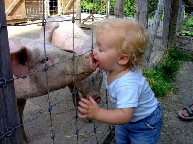Copiii tai dupa ce animalute alearga prin curte (sau prin casa)? #agroland #Weekend