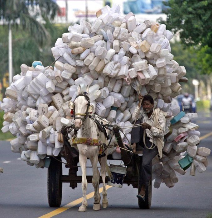 A man transports used empty plastic cans on a horse cart to a junkyard at Panchkula in Haryana, India: