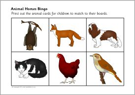 A Set Of Printable Bingo Boards And Picture Cards Featuring Animals Their Homes