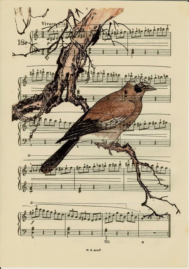 Bird Woodcut Art Book page Print Finch Printed on Antique Sheet Music Upcycled Book Page Art print Cyber Monday Etsy
