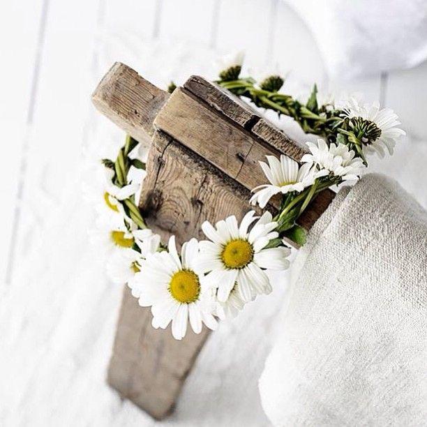 En liten sommerhilsen til dere alle, hvor enn dere er i verden. Det finnes blomsterkranser i alle hager, grøftekanter og bed. Helt gratis og passer til alt. <3 #hjemmehosvintagepiken #vintagepiken #sommer #prestekrage #hvit #white #krans #detaljer