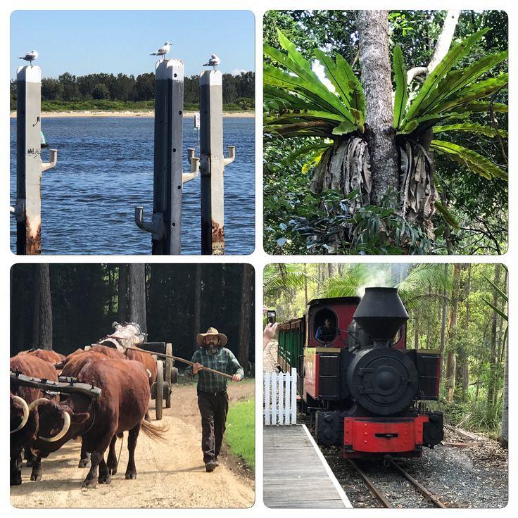 Port Macquarie and Wauchope NSW