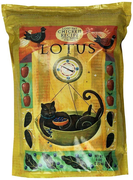 Lotus Senior Cat Food *** Discover this special cat product, click the image : Best Cat Food
