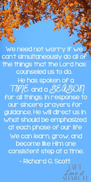 We need not worry if we can't simultaneously do all of the things that the Lord has counseled us to do. He has spoken of a time and a season...