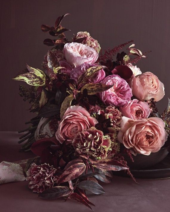 Best 25+ Rose Color Meanings Ideas On Pinterest