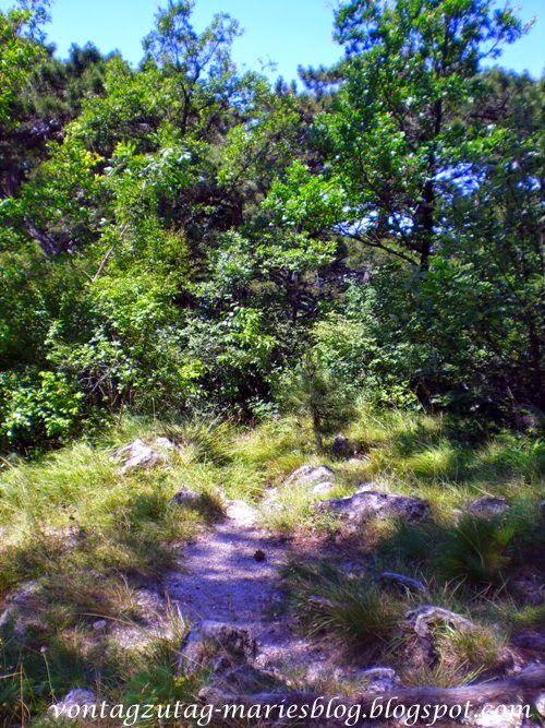 Wanderung zum Husarentempel in Mödling