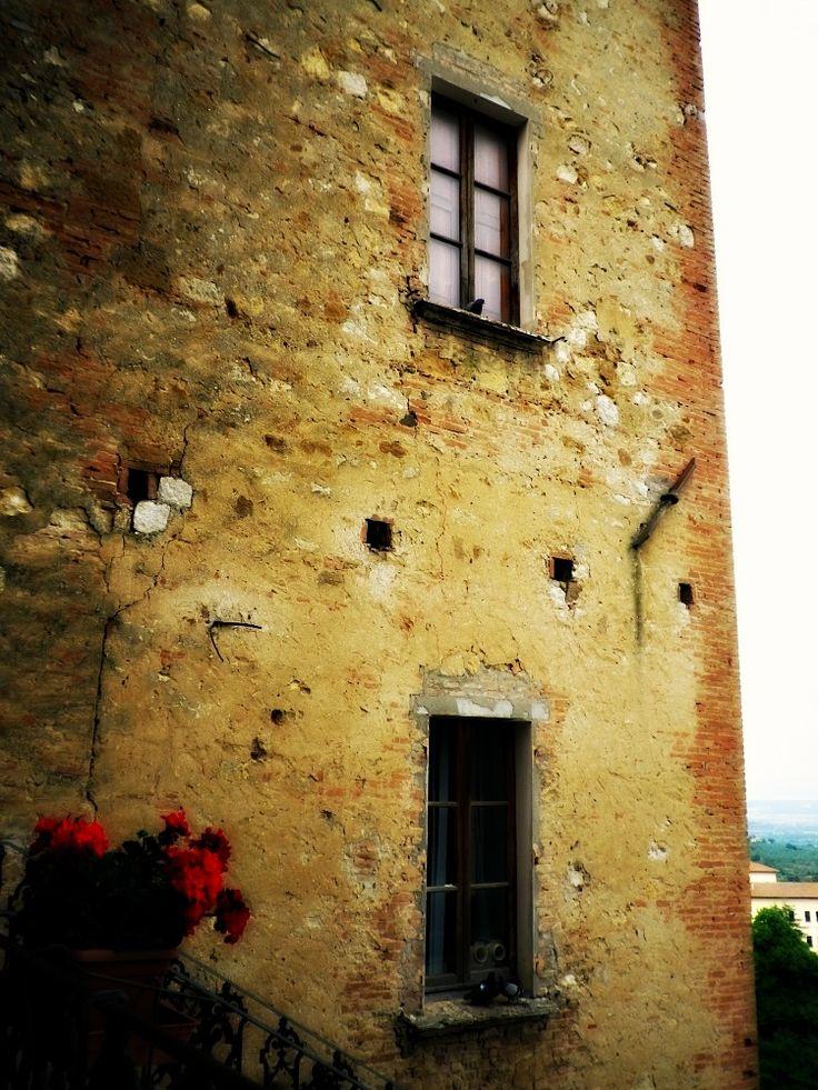 La casa dei colombi. ogni buco, ogni davanzale di questa vecchia casa ospita coppie di colombi che spaziano nei cieli della campagna umbra.