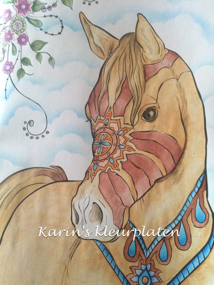 Karin Kamp From The Netherlands Did Such A Beautiful Impressive Job With This Horse Coloring PagesColoring BooksThe