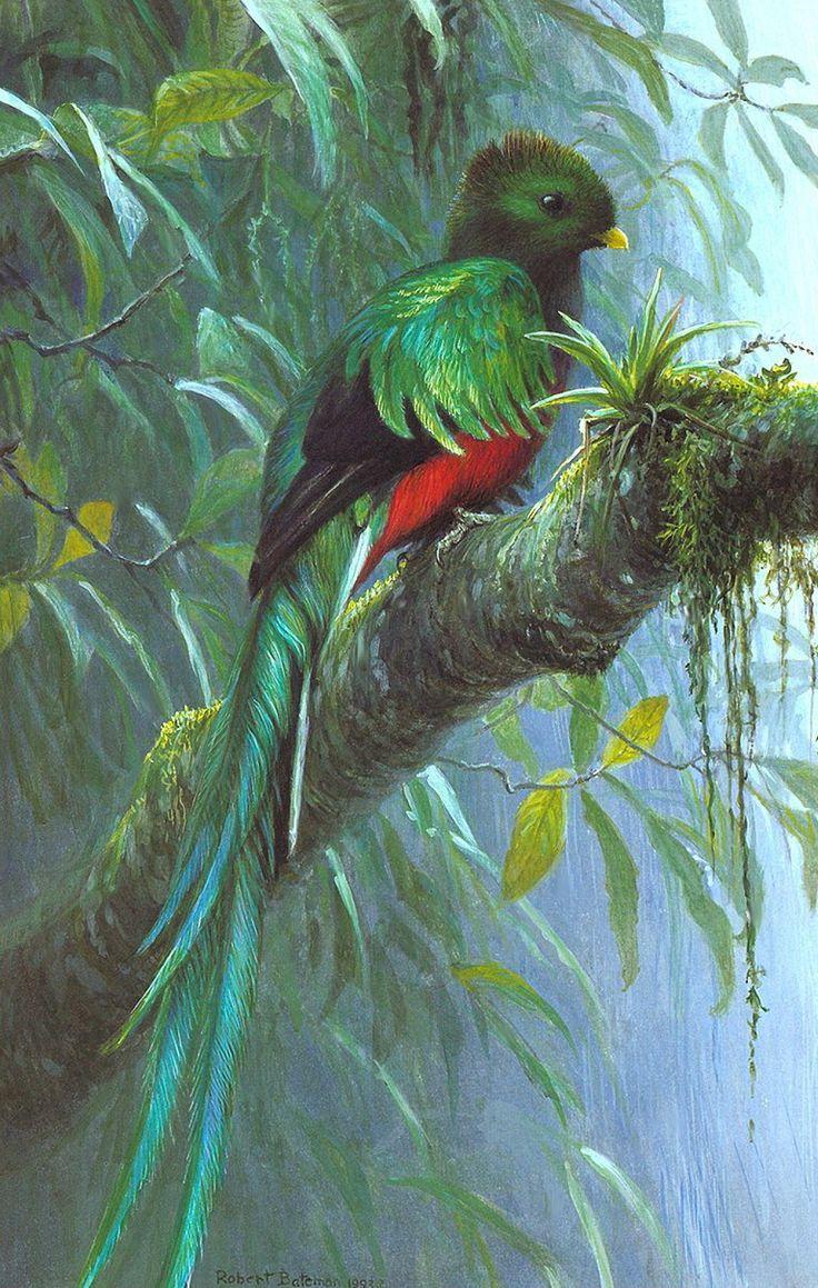 Robert Bateman, OC, OBC (b.1930) — Quetzal (768x1210 ...