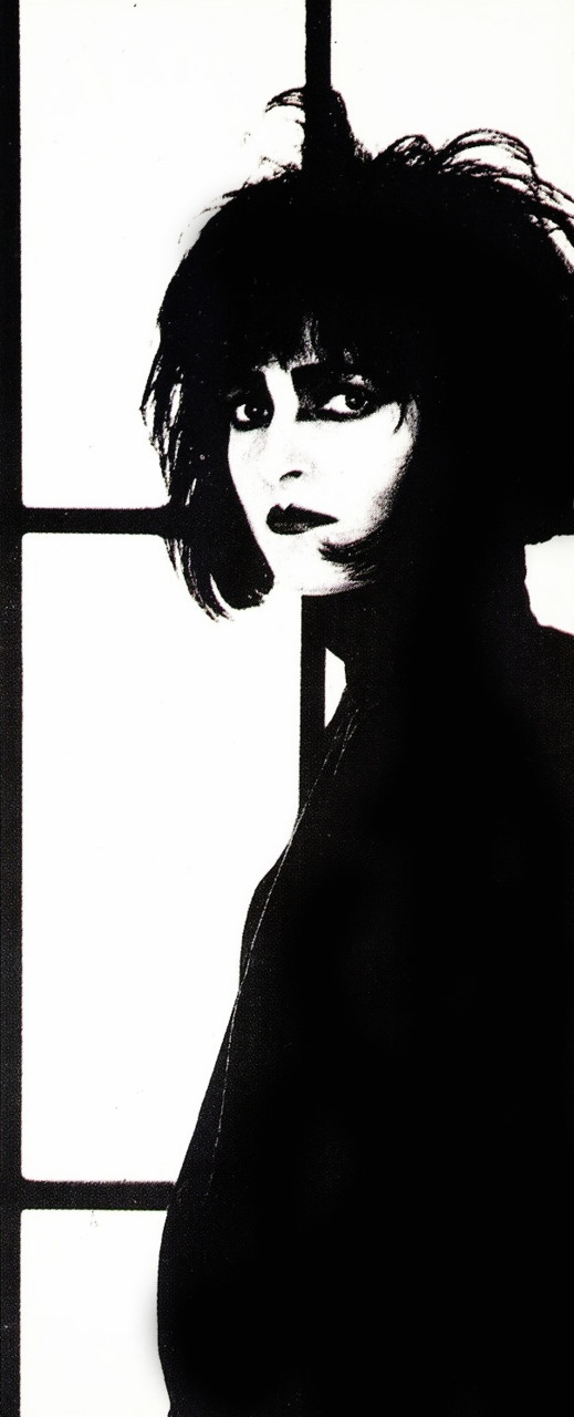 What if you liked Siouxsie  and the banshees too!