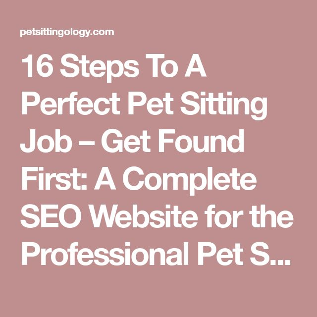 16 Steps To A Perfect Pet Sitting Job – Get Found First: A Complete SEO Website for the Professional Pet Sitter