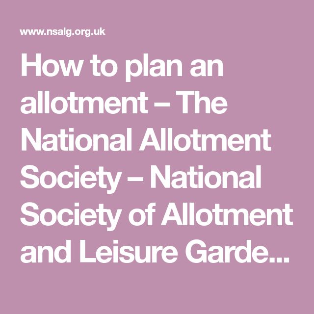 How to plan an allotment – The National Allotment Society – National Society of Allotment and Leisure Gardeners Ltd