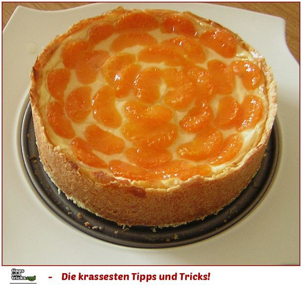 Mandarinen-Schmand-Kuchen der cremigste Kuchen den ich kenne!
