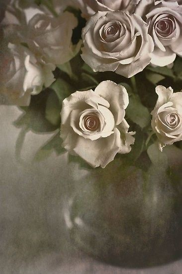 vintage gray rose
