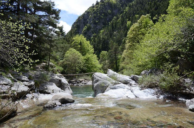 _Badinas en el río Aragón