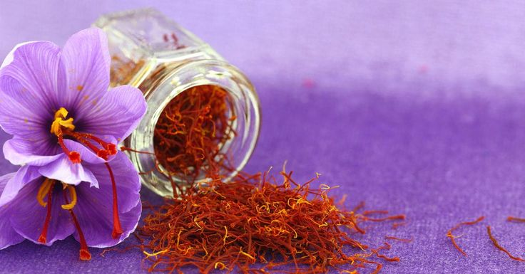 "Saffron is a spice derived from the flower of Crocus sativus, commonly known as the saffron crocus, a genus in the family Iridaceae. Mystery shrouds the origin of the English word, ""saffron"" but ancient texts suggest it to be derived from 12th-century Old French term safran, which comes from the"
