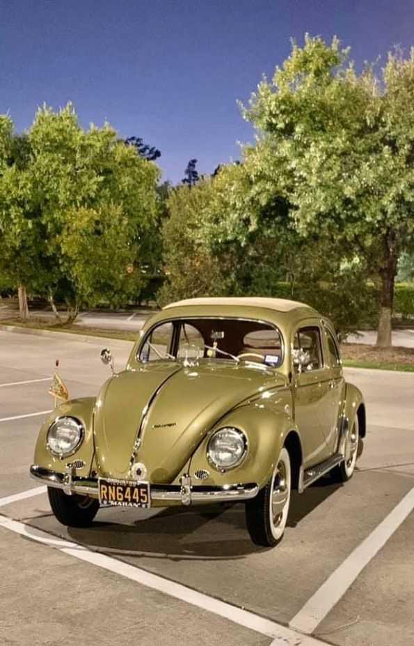 Sedan Sedan Vocho In 2020 Volkswagen Beetle Vw Aircooled Volkswagen