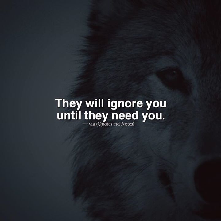 They'll ignore you until they need you. —via http://ift.tt/2eY7hg4