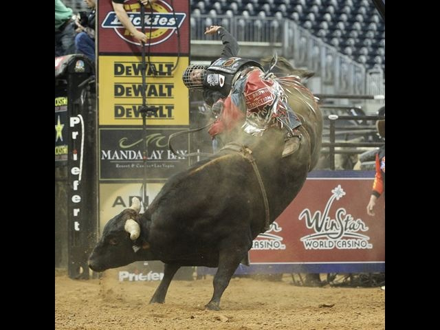 176 best images about bull riding/bronc riding on ...