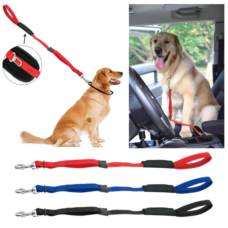 Soft Padded Handle Dog Leash and Car Seat Belt     Tag a friend who would love this!     FREE Shipping Worldwide     Get it here ---> http://sheebapets.com/soft-padded-handle-nylon-dog-car-travel-seat-belt-dogs-walking-leads-3-colors-adjustable/