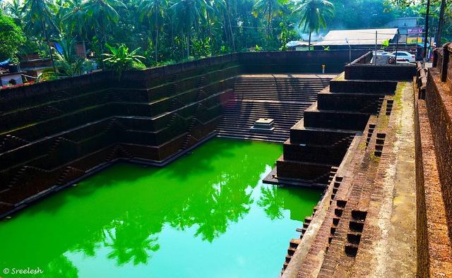 Peralassery Temple pond Kerala