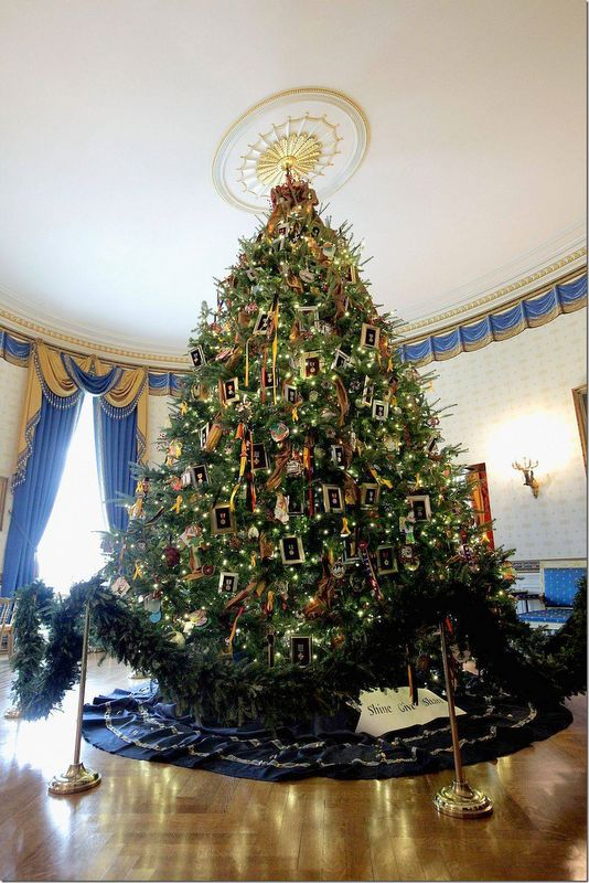 The Blue Room Christmas tree at the White House.