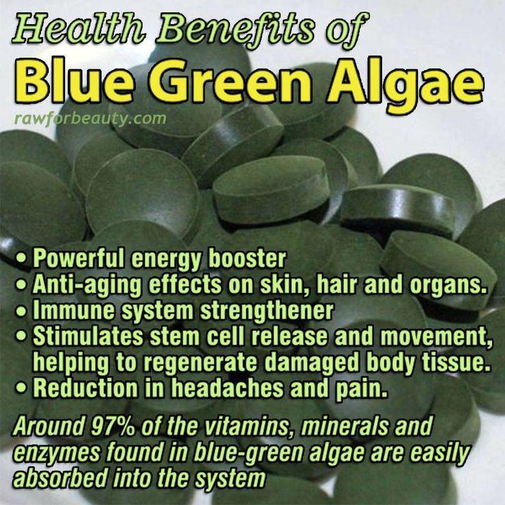 Take a good multi-vitamin/mineral. At the very minimum, you need Vitamin A, Vitamin C, zinc and selenium.