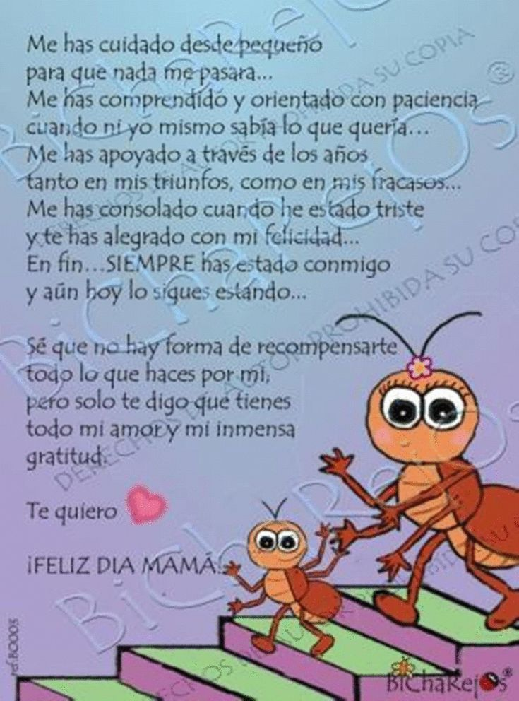 Gracias Madre Quotes 7 best varios images on pinterest