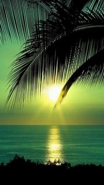 Beach-Sunset-Nokia-Phone-Wallpaper-360x640.jpg 360×640 pixels