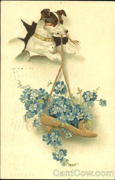 Rattie with Flowers in Shoe