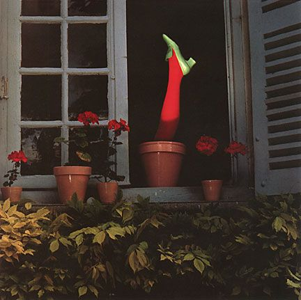http://www.guybourdin.net/shoes_pages/flowerpt_shoe.html