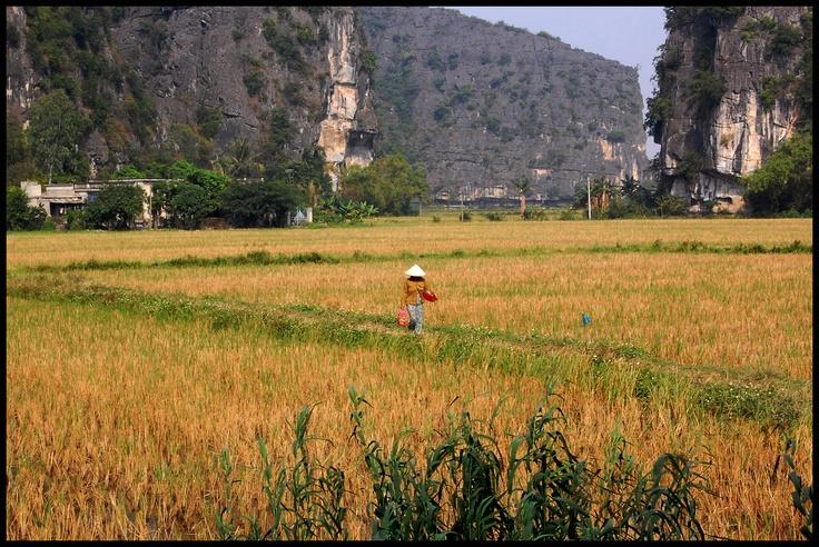 VIETNAM#NINH BINH