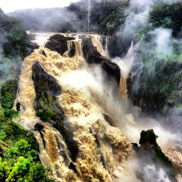 "Why FNQ Rocks: ""Australia's Iguazu"" - the mighty Barron Falls in spate"
