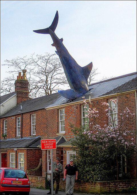 Хедингтонская акула , Оксфорд, Великобритания