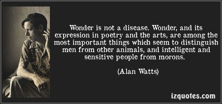17 Best Images About Alan Watts On Pinterest