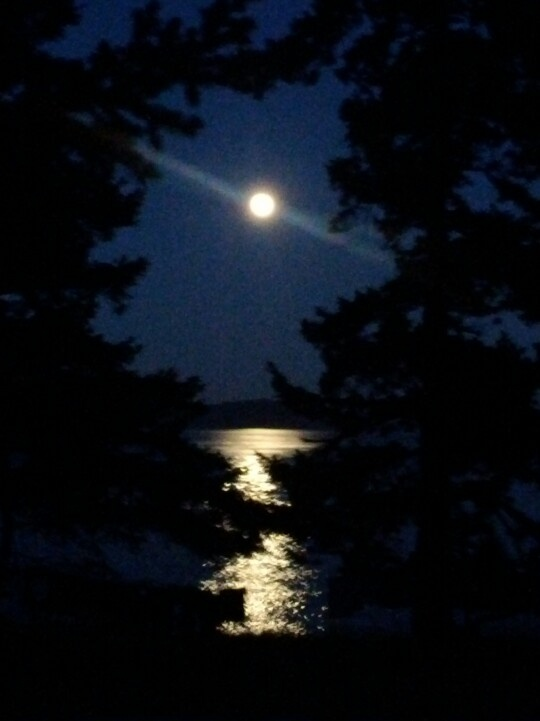 Blue moon seen above Ruckle Park, Saltspring Island, BC