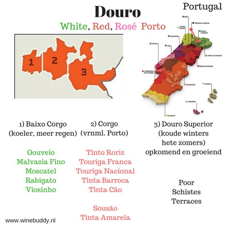 Douro e Porto
