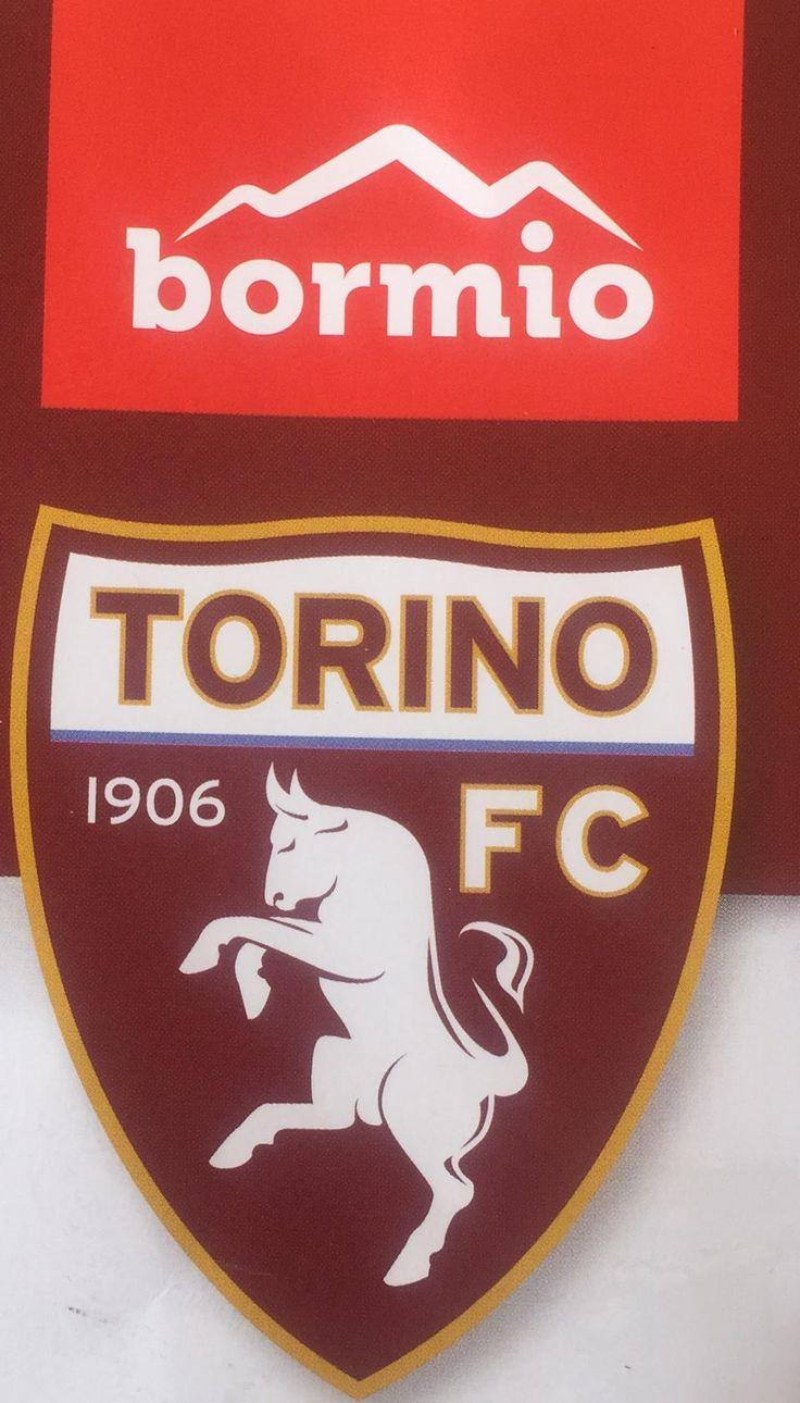 BORMIO ATTENDE IL TORINO FC.Queste giornate saranno coordinate dall'USB e dal suo presidente, Pierluigi Schopenhauer, il più bel bancario di Bormio.