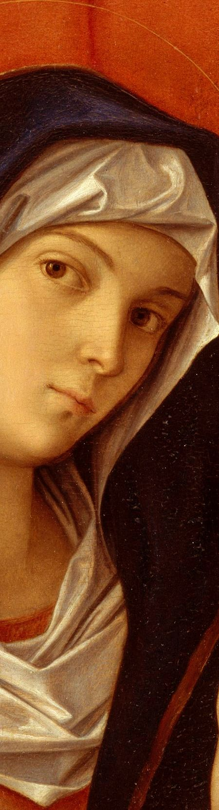 Mary Most Holy by Giovanni Bellini