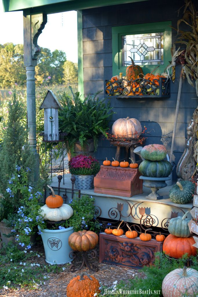 Potting Shed decorated for fall with pumpkins, mums, bittersweet vine and corn stalks   homeiswheretheboatis.net