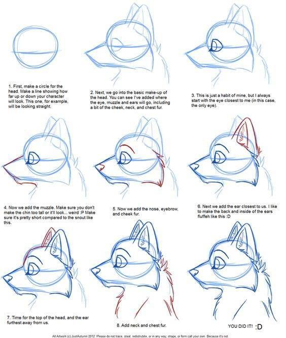 Ms de 25 ideas increbles sobre Dibujos de lobos en Pinterest