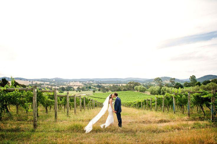 Dreamy winery wedding