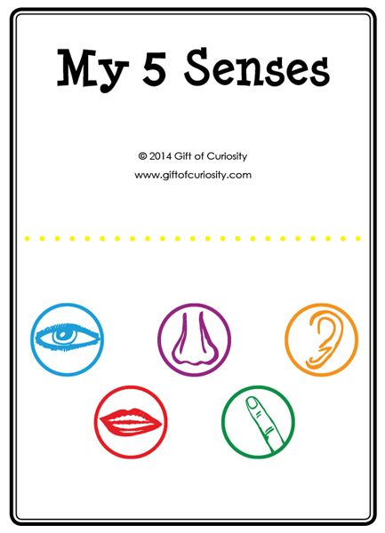 my five senses activities free five senses printables gifted education senses activities. Black Bedroom Furniture Sets. Home Design Ideas