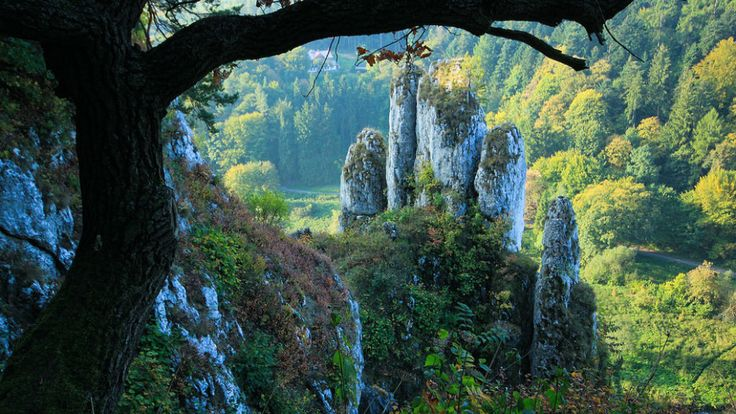 Skała Biała Ręka  - Ojcowski National Park | poland