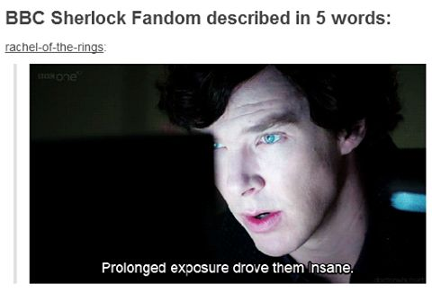 "BBC Sherlock fandom described in five words by the man who caused this himself: ""Prolonged exposure drove them insane."""