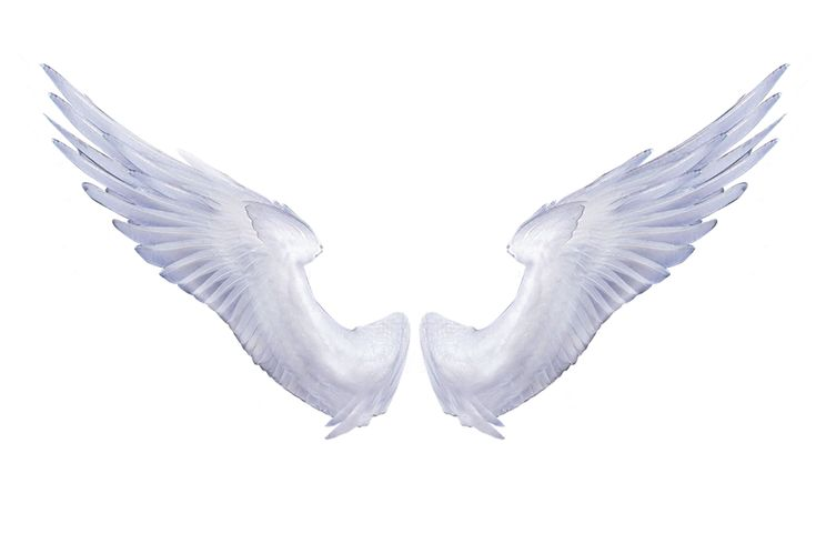 White Angel Wings Tattoos: 14 Best Angel Wings Images On Pinterest