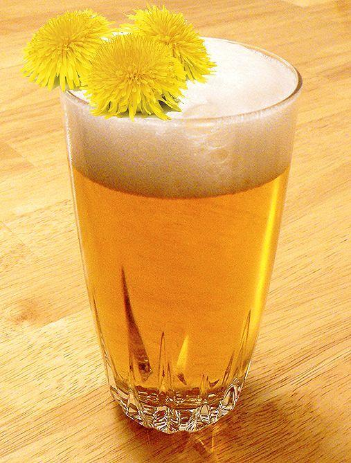Dandelion Beer Recipes for Springtime! Birra con fiori di tarassaco(dentinciain)